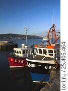 Купить «Fishing vessels moored to the Cobb in Lyme Regis Harbour, Dorset, England. Jurassic Coast World Heritage Site.», фото № 25405464, снято 21 марта 2019 г. (c) Nature Picture Library / Фотобанк Лори