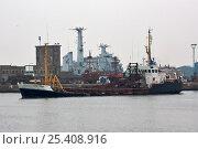 "Купить «Dredger ""Sand Swan"" at Canada Dock, Liverpool. September 2008», фото № 25408916, снято 6 июля 2020 г. (c) Nature Picture Library / Фотобанк Лори"