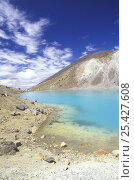 Купить «Emerald Lakes, Tongariro NP, North Island, New Zealand. January 2003», фото № 25427608, снято 17 августа 2018 г. (c) Nature Picture Library / Фотобанк Лори
