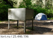 Купить «Bear box on camp site, Prairie Creek, Redwood State Park, California, USA. Campers must put all food, toiletries and other odorous products in bear resistant boxes», фото № 25446196, снято 22 мая 2018 г. (c) Nature Picture Library / Фотобанк Лори