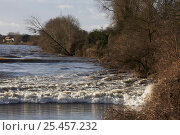 Купить «Spring tidal bore on the River Severn at Minsterworth, also known as the Severn Bore. Gloucestershire, UK.», фото № 25457232, снято 15 августа 2018 г. (c) Nature Picture Library / Фотобанк Лори