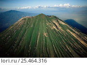Купить «Aerial view of Ol Doinyo Lengai'(The Mountain of God) Volcano, Rift Valley, Tanzania. Note - light gray flows known as 'squeeze-ups' from the highly fluid lava, still active.», фото № 25464316, снято 5 апреля 2020 г. (c) Nature Picture Library / Фотобанк Лори