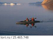 Купить «Kayak ecotourism, Qaanaaq, Greenland, Arctic.», фото № 25465748, снято 19 июля 2018 г. (c) Nature Picture Library / Фотобанк Лори