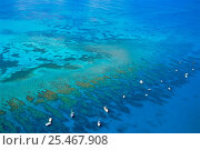 Купить «Aerial view of boats moored on Looe Key Reef, Florida Keys NP, spur and groove coral reef.», фото № 25467908, снято 21 января 2018 г. (c) Nature Picture Library / Фотобанк Лори
