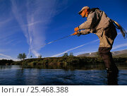 Купить «Fly-fishing for trout, Ammarnas, Vindelfjallen NR, Lapland, Sweden.», фото № 25468388, снято 19 сентября 2019 г. (c) Nature Picture Library / Фотобанк Лори