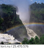 Купить «Victoria Falls with rainbow, Zimbabwe.», фото № 25470576, снято 8 декабря 2019 г. (c) Nature Picture Library / Фотобанк Лори