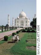 Купить «Taj Mahal with ox drawn lawn mowing machine, Agra, Uttar Pradesh, India», фото № 25477604, снято 18 августа 2018 г. (c) Nature Picture Library / Фотобанк Лори