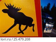Купить «Moose warning sign on roadside, Sweden.», фото № 25479208, снято 23 января 2019 г. (c) Nature Picture Library / Фотобанк Лори