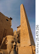 Купить «Statue of Ramses II, obelisk and hieroglyphs, Luxor, Egypt.», фото № 25479256, снято 20 января 2019 г. (c) Nature Picture Library / Фотобанк Лори