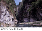 Купить «Taroko gorge, Taiwan», фото № 25484508, снято 16 августа 2018 г. (c) Nature Picture Library / Фотобанк Лори