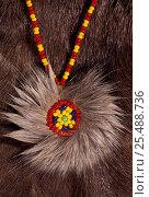 Купить «Koryak beadwork + fur pendant, Kamchatka peninsula, Russia», фото № 25488736, снято 17 августа 2018 г. (c) Nature Picture Library / Фотобанк Лори