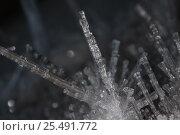 Кристаллы льда. Стоковое фото, фотограф Михаил Плетнев / Фотобанк Лори