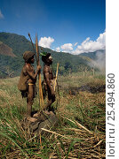 Купить «Hagahai warriors standing on stone in grassland, hunting pigs, smoking them out of field, Papua New Guinea 1992», фото № 25494860, снято 22 апреля 2019 г. (c) Nature Picture Library / Фотобанк Лори