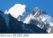 Купить «Bezengi Wall Peak Missis-Tau Caucasus mountains, Kabardino-Balkaria, Russia.», фото № 25501204, снято 16 июля 2020 г. (c) Nature Picture Library / Фотобанк Лори