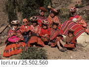 Купить «Quechua indians in traditional everyday dress, Wiloyuc (Huilloc) village, Andes, Peru 2002», фото № 25502560, снято 19 июля 2018 г. (c) Nature Picture Library / Фотобанк Лори