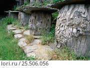 Купить «Ancient apiary with beehives made out of timber, Cevennes, France», фото № 25506056, снято 20 августа 2018 г. (c) Nature Picture Library / Фотобанк Лори