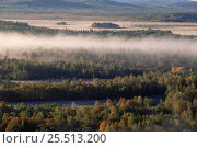 Купить «Morning mist above taiga forest in Autumn, Primorsky region, Far East Russia (Ussuriland).», фото № 25513200, снято 21 марта 2019 г. (c) Nature Picture Library / Фотобанк Лори