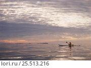 Купить «Lone kayak on water - ecotourism in the Stockholm Archipelago, Sweden.», фото № 25513216, снято 19 июля 2018 г. (c) Nature Picture Library / Фотобанк Лори