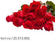 Купить «Букет красных роз на белом фоне», фото № 25513892, снято 6 февраля 2017 г. (c) Юлия Бабкина / Фотобанк Лори