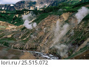 Купить «Thermal vents in Valley of the Geysers, Kamchatka Peninsula, Eastern Russia», фото № 25515072, снято 23 мая 2019 г. (c) Nature Picture Library / Фотобанк Лори