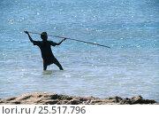 Купить «Aboriginal man spear fishing Cobourg Marine Park, traditional way of fishing, Northern Territories, Australia», фото № 25517796, снято 21 июля 2018 г. (c) Nature Picture Library / Фотобанк Лори