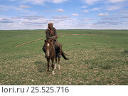 Купить «Man riding horse carrying long pole with rope to catch horses with, Mongolia», фото № 25525716, снято 16 августа 2018 г. (c) Nature Picture Library / Фотобанк Лори