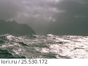Купить «Rough seas, Antarctic Stormy», фото № 25530172, снято 15 августа 2018 г. (c) Nature Picture Library / Фотобанк Лори