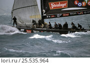 "Купить «""Team New Zealand"" during Race 4 of the America's Cup 2003 in Auckland, New Zealand. ^^^ Team New Zealand went on to dismast as Alinghi continued on to win the race.», фото № 25535964, снято 19 июля 2018 г. (c) Nature Picture Library / Фотобанк Лори"