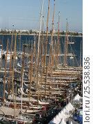 Купить «Fleet moored during Cannes Royal Regatta, France, 2007.», фото № 25538836, снято 21 августа 2018 г. (c) Nature Picture Library / Фотобанк Лори