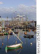 Купить «Harbour scene at Douarnenez Maritime Festival, France, July 2008», фото № 25543532, снято 11 декабря 2018 г. (c) Nature Picture Library / Фотобанк Лори