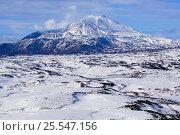 Купить «Taunshitz Volcano covered in snow, Kronotsky Zapovednik Reserve, Kamchatka, Russia.», фото № 25547156, снято 5 апреля 2020 г. (c) Nature Picture Library / Фотобанк Лори