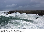 Купить «Rough seas during Storm 'Ruth', Ile d'Ouessant, Armorique Regional Park. Iles du Ponant, Finistere, Brittany, France, Iroise Sea. 8th February 2014.  France...», фото № 25549564, снято 20 марта 2019 г. (c) Nature Picture Library / Фотобанк Лори