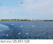 Вид на Соловецкий Кремль (2010 год). Редакционное фото, фотограф Алексей Ионов / Фотобанк Лори