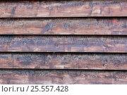 Купить «Фон стена из старых деревянных досок», фото № 25557428, снято 14 августа 2016 г. (c) Евгений Рашевский / Фотобанк Лори
