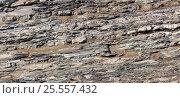 Купить «Каменное русло горной реки», фото № 25557432, снято 14 августа 2016 г. (c) Евгений Рашевский / Фотобанк Лори