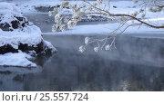 Купить «Голубые Озёра на реке Катунь зимой / Video of Blue Lakes on Katun river in Altai mountains in winter season», видеоролик № 25557724, снято 30 января 2017 г. (c) Serg Zastavkin / Фотобанк Лори
