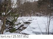 Быстрая река в зимнем лесу. Стоковое фото, фотограф Соколов Дмитрий / Фотобанк Лори