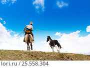 Купить «Horse catching in Mongolia», фото № 25558304, снято 18 июня 2009 г. (c) Александр Подшивалов / Фотобанк Лори