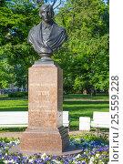 Купить «Памятник Н. В. Гоголю в Александровском саду Санкт-Петербурга», фото № 25559228, снято 1 июня 2016 г. (c) Сергей Дубров / Фотобанк Лори