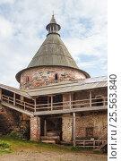 Купить «Вид на Белую башню из Соловецкого монастыря», фото № 25563840, снято 18 августа 2013 г. (c) Дмитрий Тищенко / Фотобанк Лори