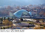 Купить «Современная архитектура Тбилиси, Грузия. Вид на Парк Европы (Rake Park)  и Мост Мира», фото № 25569620, снято 23 декабря 2016 г. (c) Светлана Колобова / Фотобанк Лори