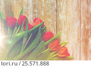 Купить «close up of red tulips on wooden background», фото № 25571888, снято 3 марта 2015 г. (c) Syda Productions / Фотобанк Лори