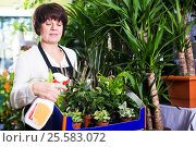 Купить «Assistant showing variety of green plants», фото № 25583072, снято 8 ноября 2016 г. (c) Яков Филимонов / Фотобанк Лори