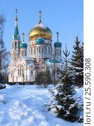 Город Омск, Успенский Кафедральный собор, фото № 25590308, снято 15 января 2017 г. (c) Виктор Топорков / Фотобанк Лори