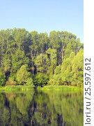 Купить «Beautiful summer landscape», фото № 25597612, снято 3 июля 2014 г. (c) Сергей Девяткин / Фотобанк Лори