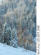 Купить «Winter Ukrainian Carpathian Mountains landscape.», фото № 25601540, снято 15 января 2017 г. (c) Юрий Брыкайло / Фотобанк Лори