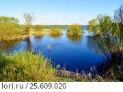Весенний пейзаж с лесными деревьями на реке, залитыми водой, фото № 25609020, снято 5 мая 2016 г. (c) Зезелина Марина / Фотобанк Лори