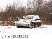 Купить «Самоходная артиллерийская установка СУ-76», эксклюзивное фото № 25613272, снято 23 февраля 2017 г. (c) Александр Щепин / Фотобанк Лори
