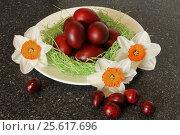 Red easter eggs with flowers. Стоковое фото, фотограф MARINA EVDOKIMOVA / Фотобанк Лори