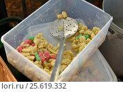 Итальянские клёцки ньокки. Стоковое фото, фотограф AK Imaging / Фотобанк Лори